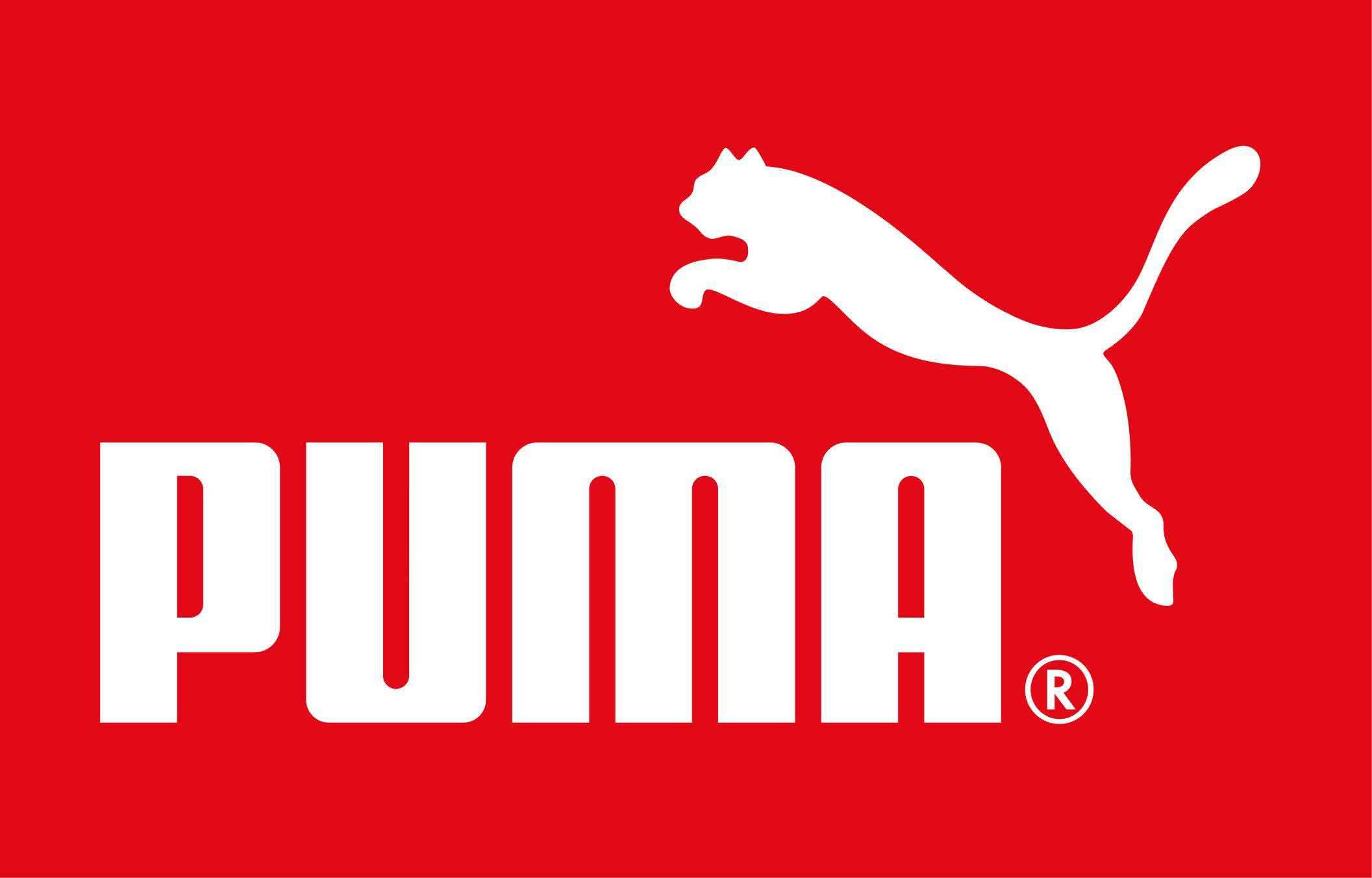 Annual Puma Safe Sustainable Design Lecture Africa